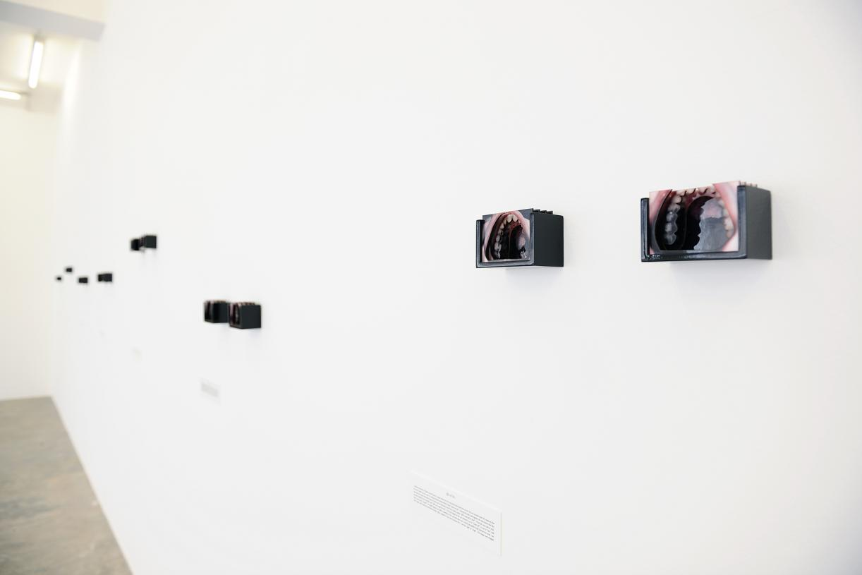 Disputed Utterance, 2019, 14 laser-cut diorama, c-prints mounted on cardboard with wooden cases, 7 texts printed on PVC plates, 7 x 10 x 6 cm each, Ed. 5 + 2 AP