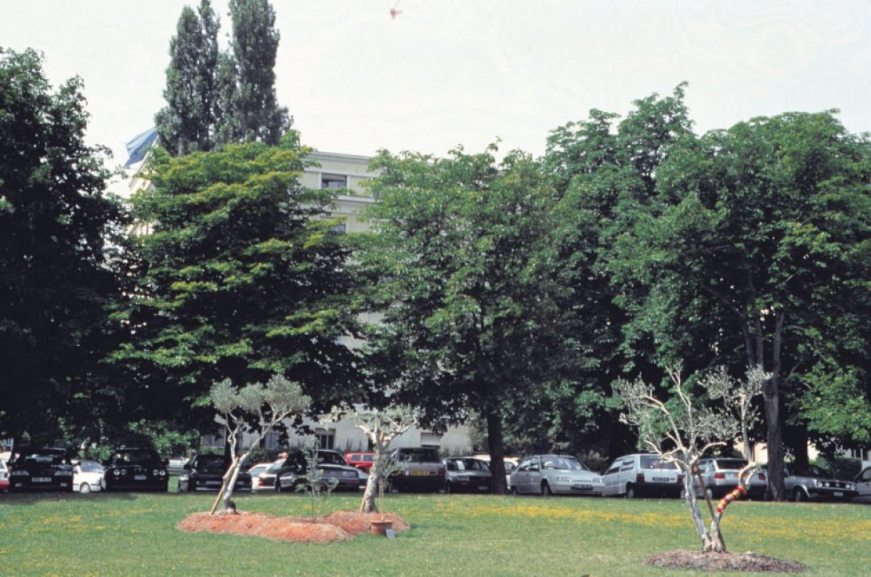 Grafting, 1995, Exhibition view. Ariana Park, Geneva