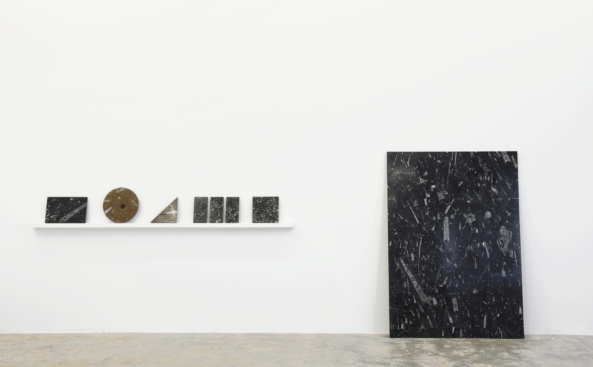 Untitled (Fossil Samples, Rectangle, Square,Triangle, Circle), 2014, Orthoceras fossil stone, Various dimension. Installation view Sfeir-Semler Gallery, Beirut, 2016