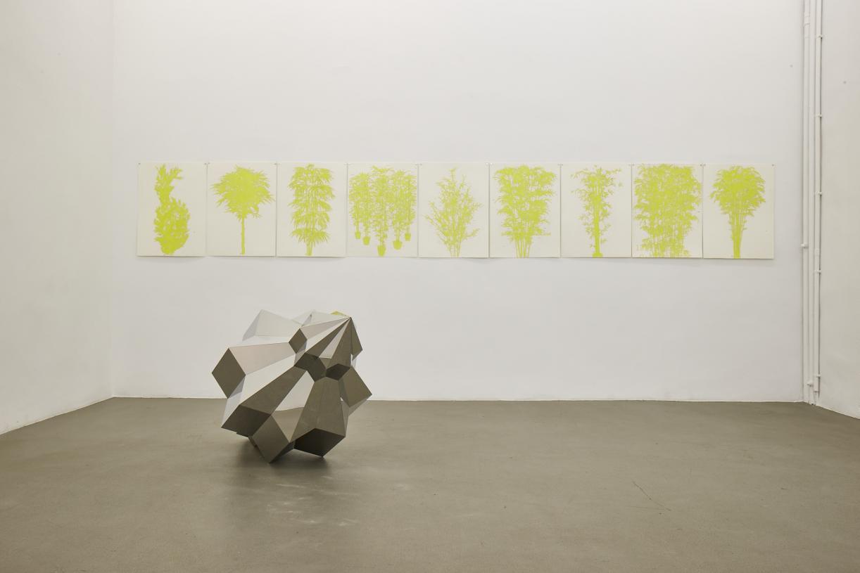 Ania Soliman, bamboos, exhibition view