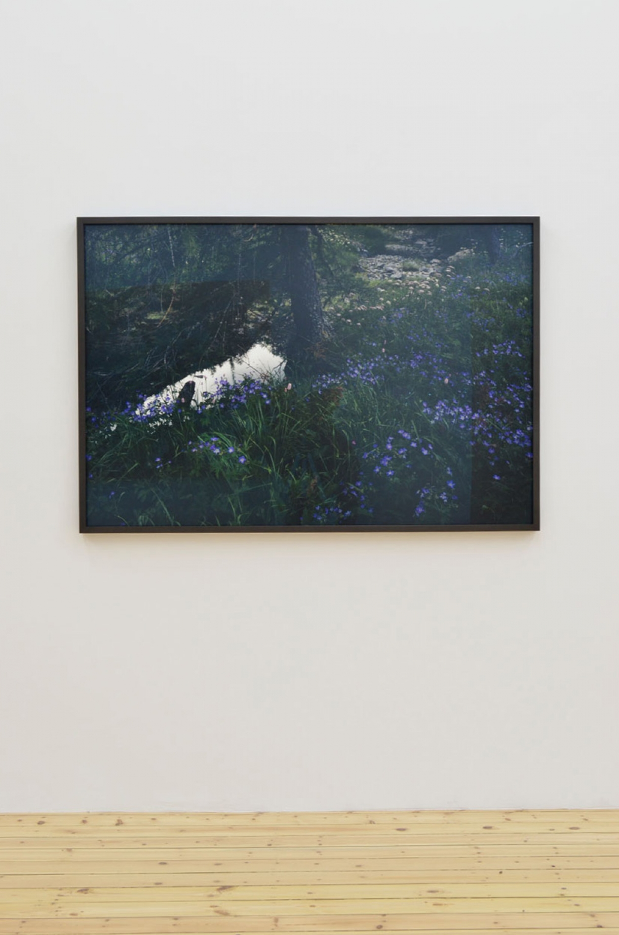 Balthasar Burkhard, Landscape, 2008, C-Print, 97 x 143,5 cm