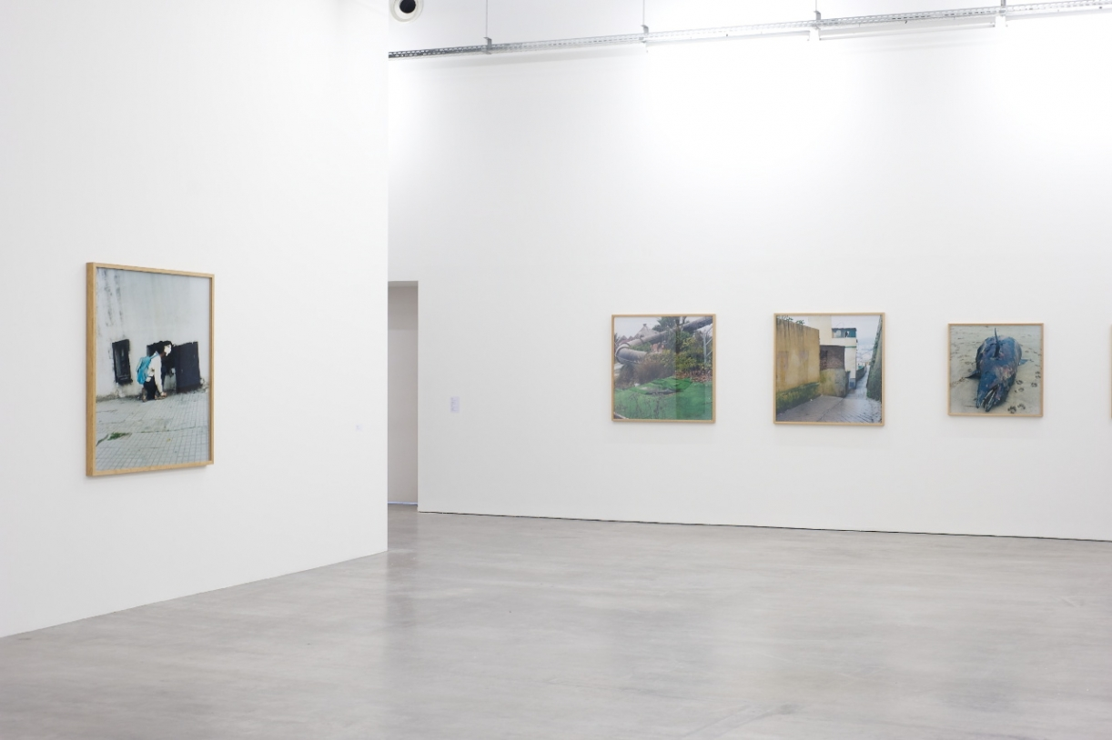Riffs, 2008-2011. Installation view WIELS Contemporary Art Centre, Brussels, 2011. ©Filip Vanzieleghem