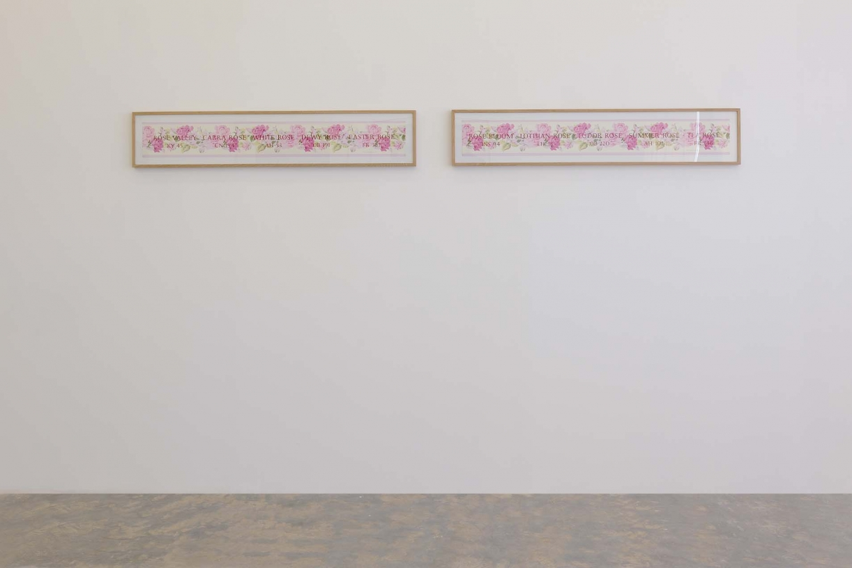 Rose Boat Names: Rose Valley KY 45, Rose Bloom INS94, 2002, Tate St. Ives edition, Silkscreen print, 112 x 15 cm each, Ed. 250