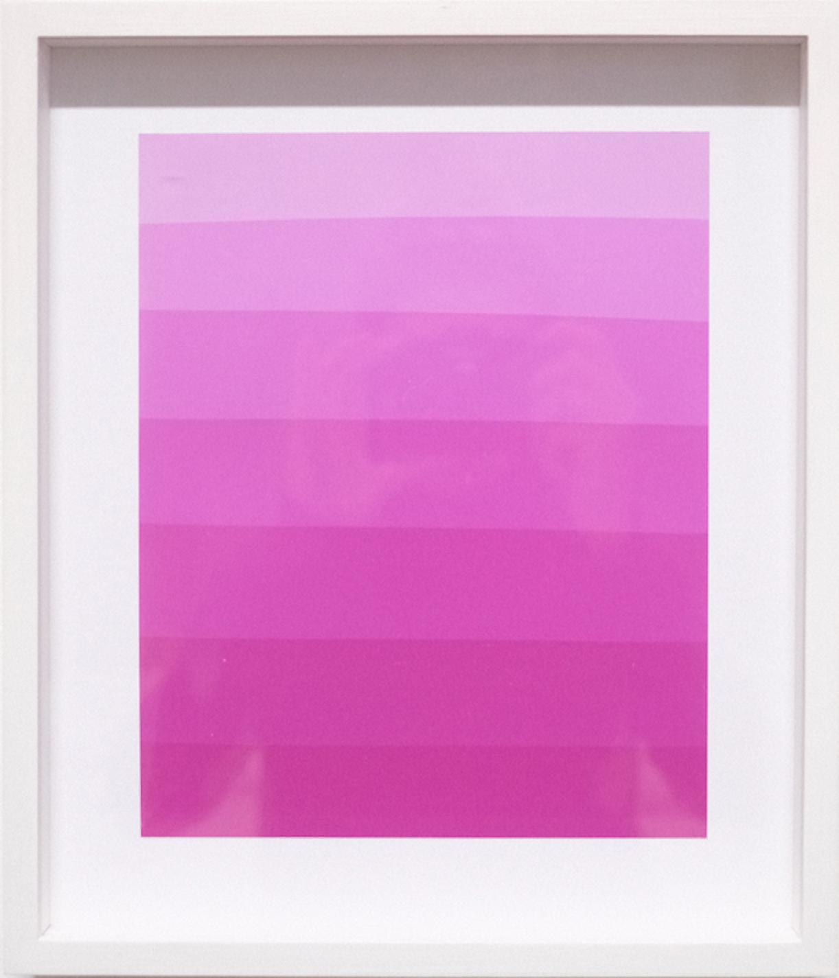 Photogram (Color gradient pink), photographic paper, 34 x 29 cm framed