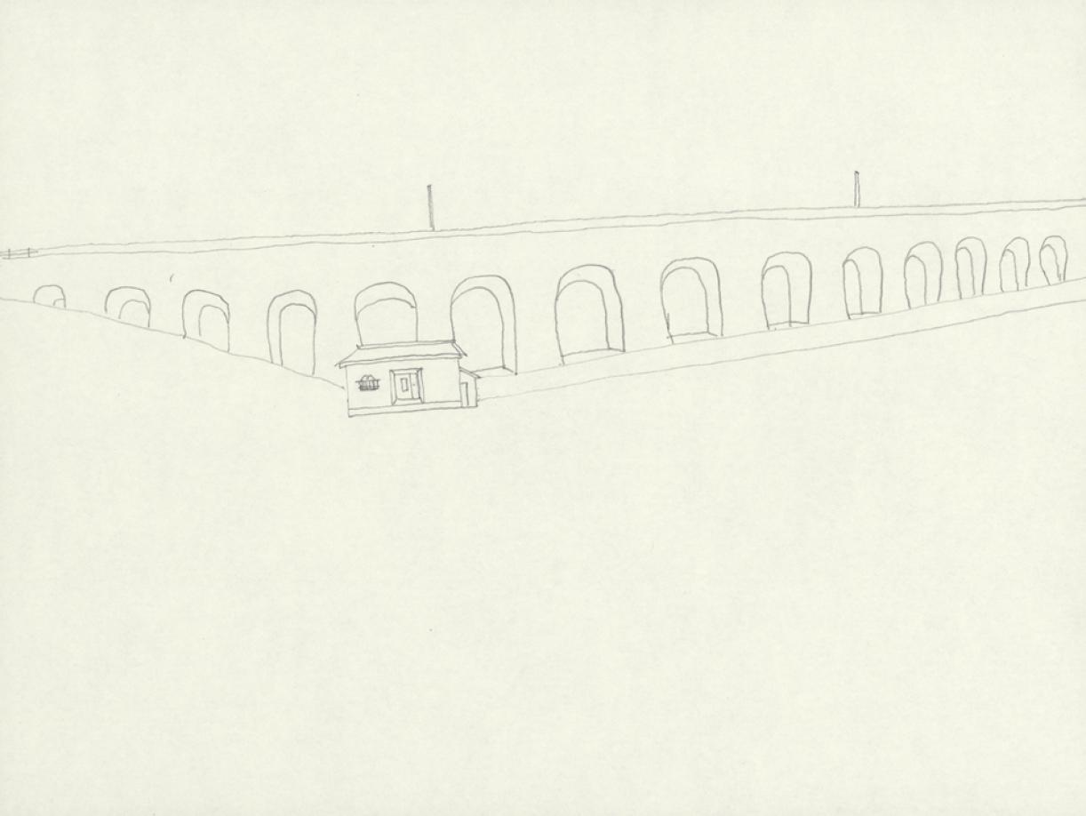 1106/8338.jpg