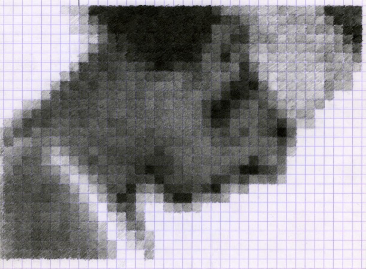 86/574.jpg