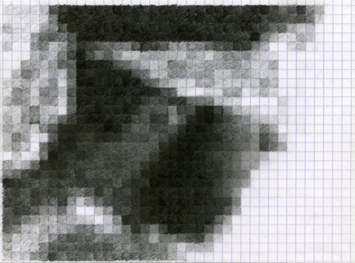 86/576.jpg