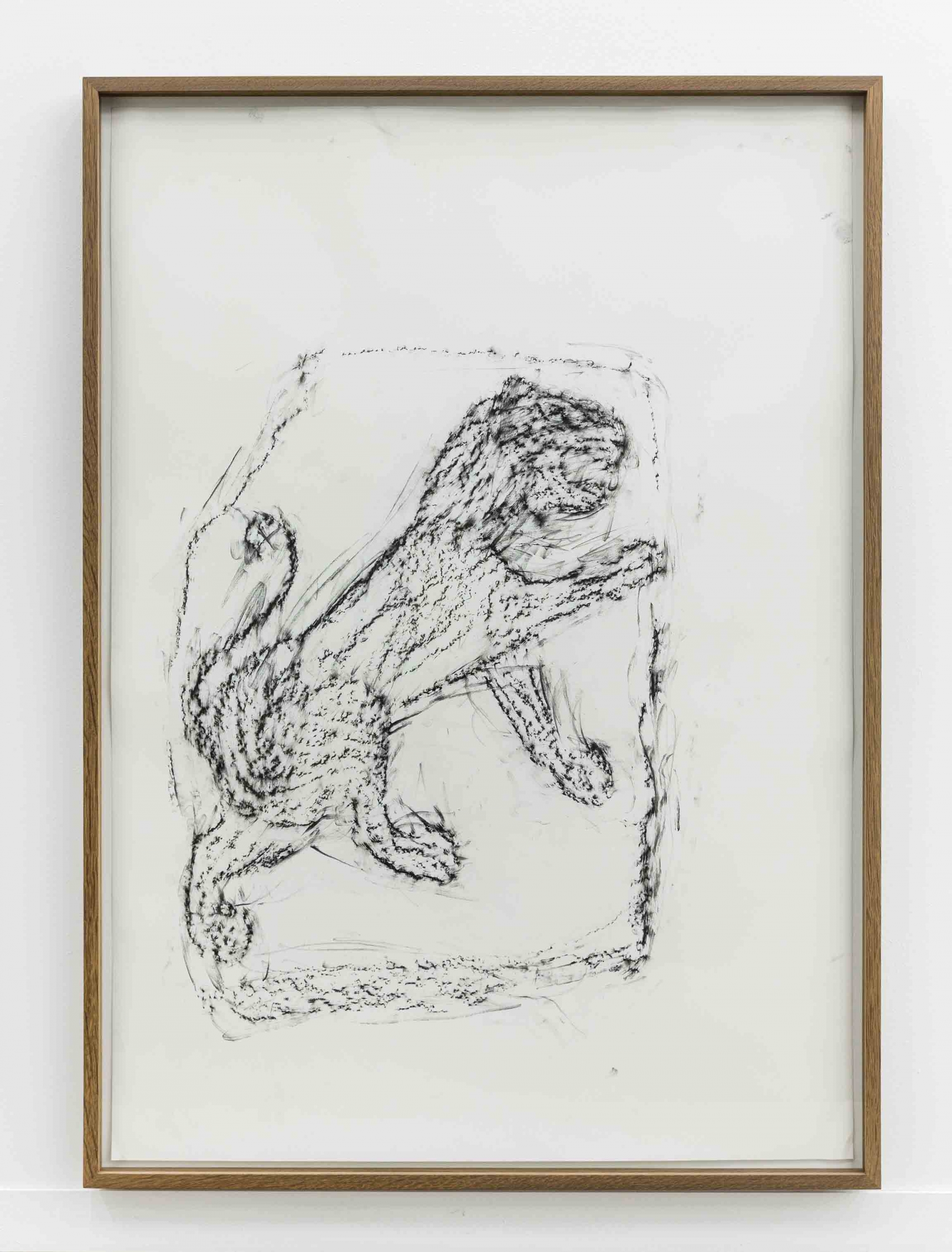 Orthostate #034 (Lion), 2017, 32 framed charcoal on paper rubbings, vinyl on wall, 107x77cm each