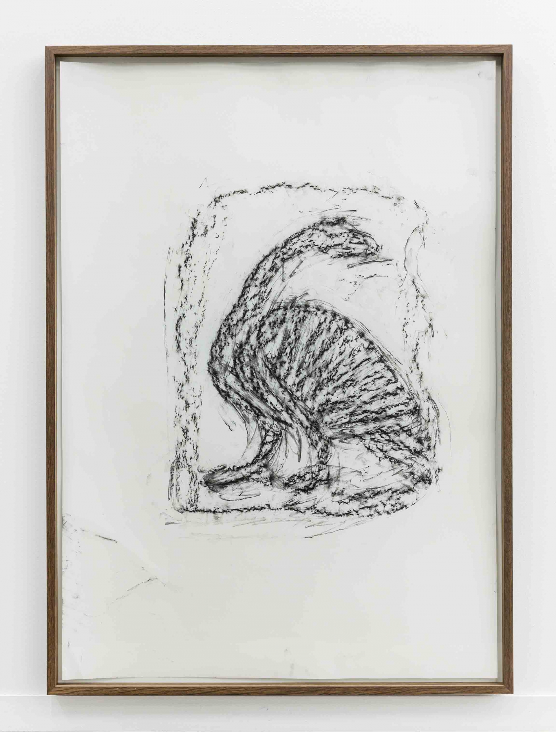 Orthostate #015 (Goose), 2017, 32 framed charcoal on paper rubbings, vinyl on wall, 107x77cm each