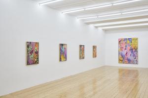 Christine Streuli, Nachtschattengewächse, Exhibition view, Sfeir-Semler Gallery Hamburg, 2017
